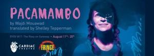Pacamambo at the Edmonton Fringe Festival. Photo credit: Giselle Boehm